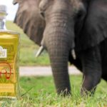 This gin is made with elephant dung and there's a good reason