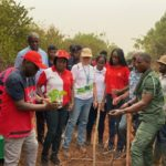 Vodafone partners Forestry Commission, Ghana International School to plant trees