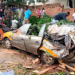 Falling tree kills driver in parked car in Kumasi