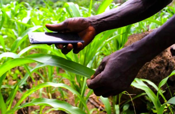 Is Technological innovation in Agriculture enough to secure food security in Ghana?