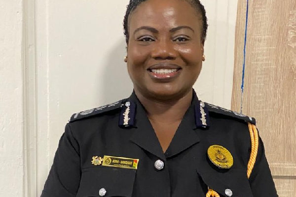IGP, Maame Tiwaa helped me recover from coronavirus – Police chief