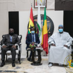 'Thank you' – Mali's interim President tells Akufo-Addo