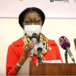 BoG does not collapse companies, their owners do – Elsie Awadzi