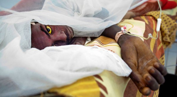 Over 60,000 people to be vaccinated against yellow fever in Berekum