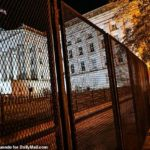 US Elections: 'Non-scalable' fence erected outside the White House