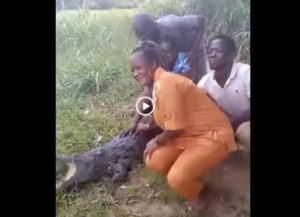 Woman in Ave Dakpa crocodile attack video sustained minor injury