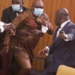 Election of Speaker: Carlos Ahenkorah snatches ballot papers during counting [VIDEO]