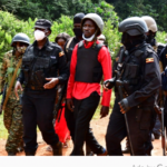 Tear gas fired as Uganda police arrest Bobi Wine