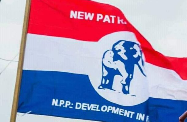 Reward our loyal youth with jobs – NPP Savannah Youth Organizer to party