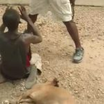 Man lynched for stealing pregnant goat in Nsawam