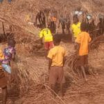 Oti Region: Pupils use class hours to build makeshift sheds as classrooms