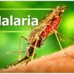 Malaria prevention drugs for Bono East kids