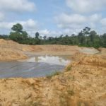 Illegal mining: Govt bans prospecting activities in forest reserves