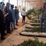 Israel woos Ghanaian companies with advanced agric technology