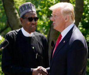 Nigeria's Twitter Ban: Donald Trump hails Buhari