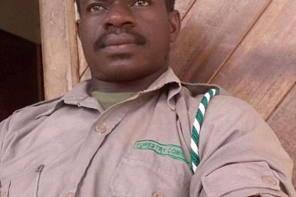 Forest guard supplying seedlings for Green Ghana Project shot to death