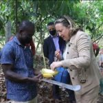 Engage in climate-friendly practices – UK government urges Ghanaian cocoa farmers