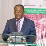 Sustaining cashew cultivation: Wa hosts engagement on quality seedling development
