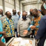 1D1F: Akufo-Addo commissions GHC10 million yam and cassava processing factory in Oti